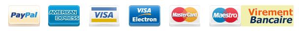 Paiement-securise-visa.png